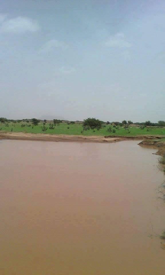 جديد التساقطات المطرية على مناطق عديدة من البلاد (المقاييس)