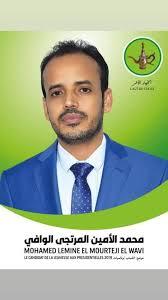 محمد الامين المرتجي الوافي