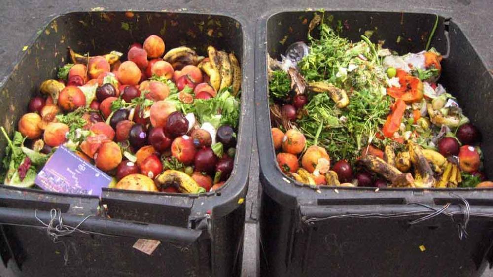 13 مليار دولار في القمامة.. السعودية تتصدر دول العالم في هدر الطعام