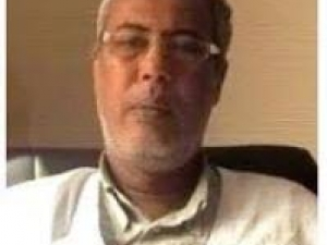 محمد فال سيدي ميله