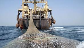 مفاوضات بين موريتاينا والإتحاد الأروبي حول أبروتوكول جديد في مجال الصيد
