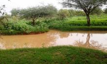 أمطار معتبرة على خمس ولايات بالشرق والجنوب الشرقي